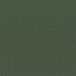 Olive Green Fabric 756